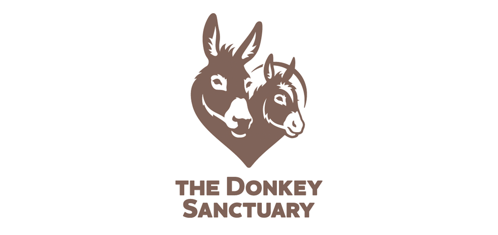 donkey-sanctuary4